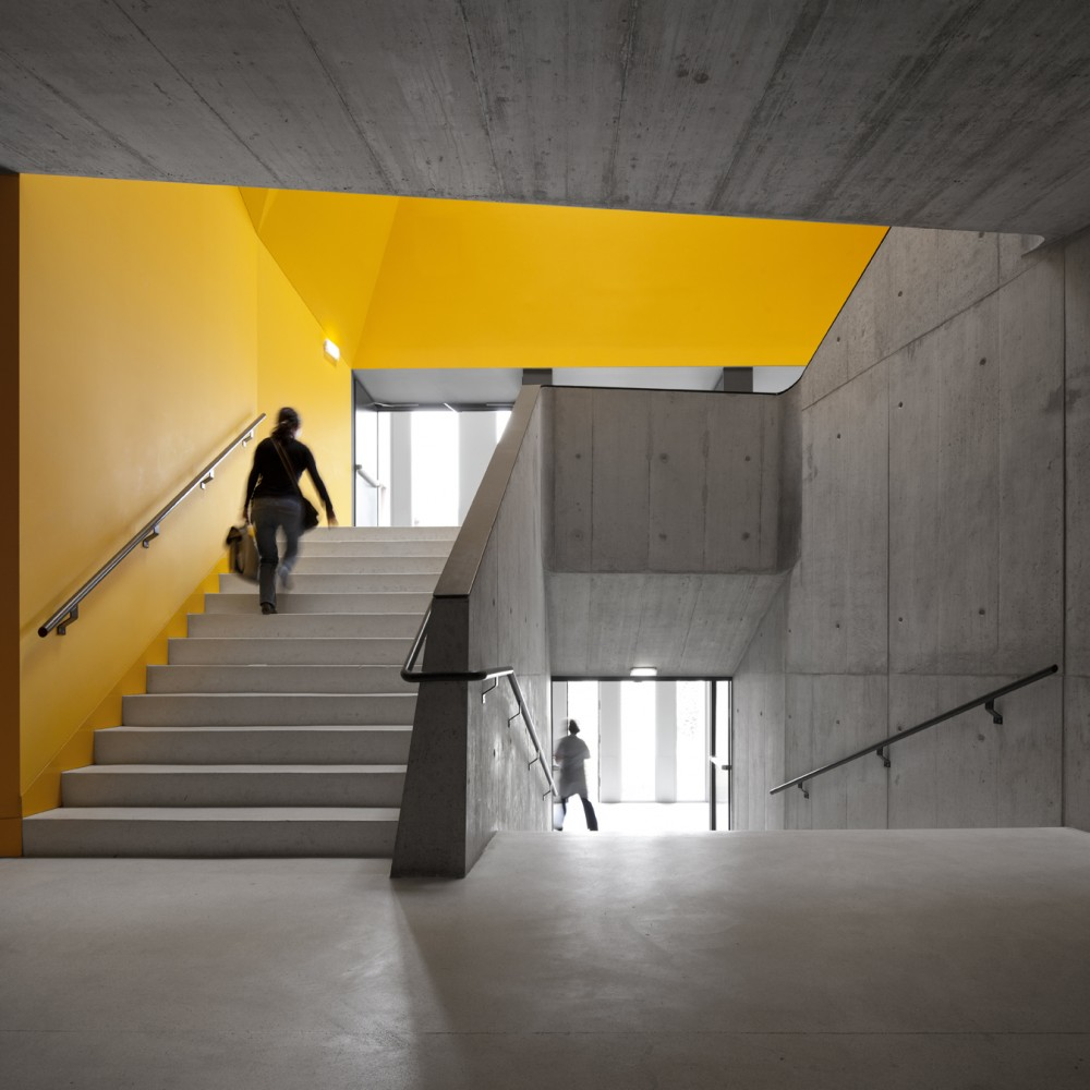 """Peter Barrett salientou que a """"cor é um toque inteligente, muda a luz ao longo do dia, o que é encantador""""."""